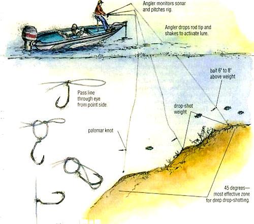 какие снасти используют для ловли судака