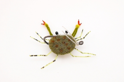 Краб морской оливковый